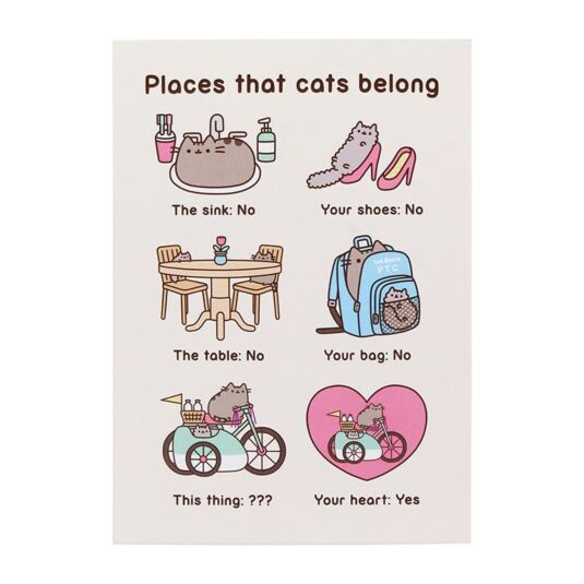 'Places that Cats Belong' Card