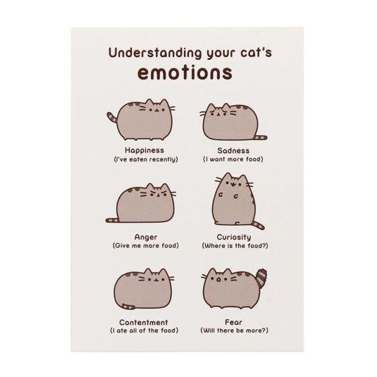 Understanding Your Cat's Emotions Card
