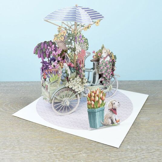 """Flower Seller's Bicycle"" 3D Card"