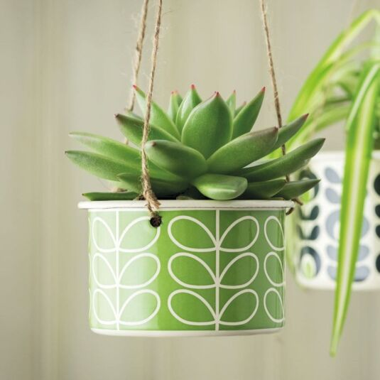 Linear Stem Small Hanging Pot