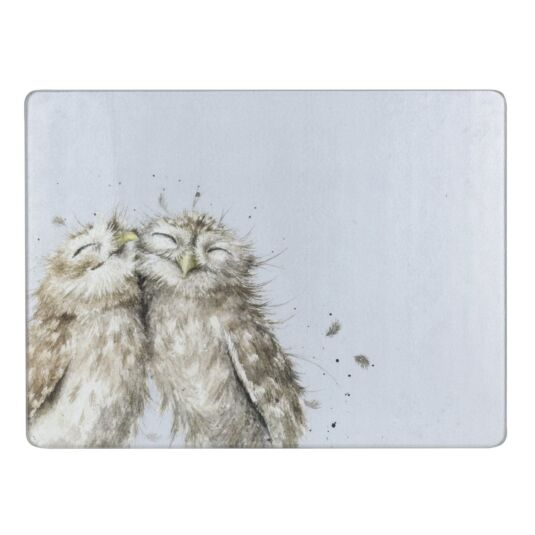 Owls Glass Worktop Saver