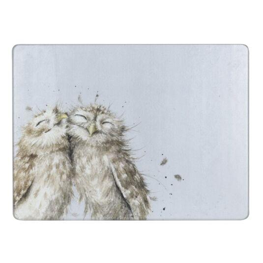Owls Glass Worktop Saver