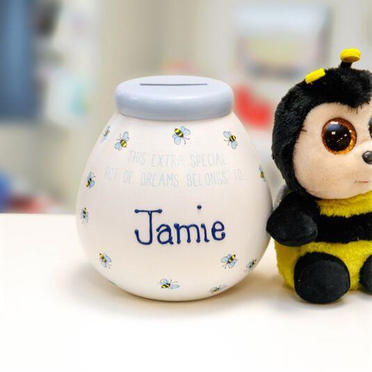 Personalised Bees Money Pot