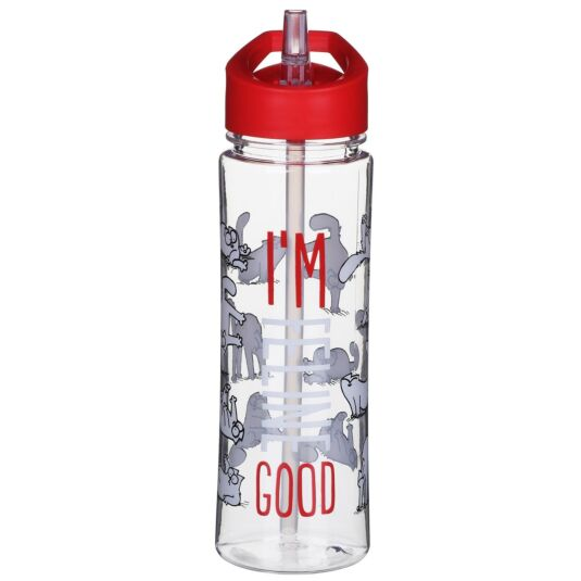 Simon's Cat Water Bottle 500ml