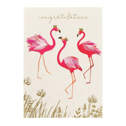 Congratulations Flamingos Card