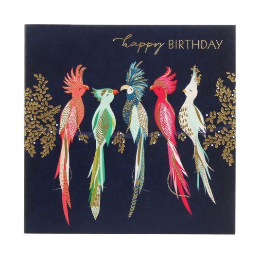 Cockatoos Birthday Card