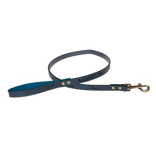 Medium Teal Lead