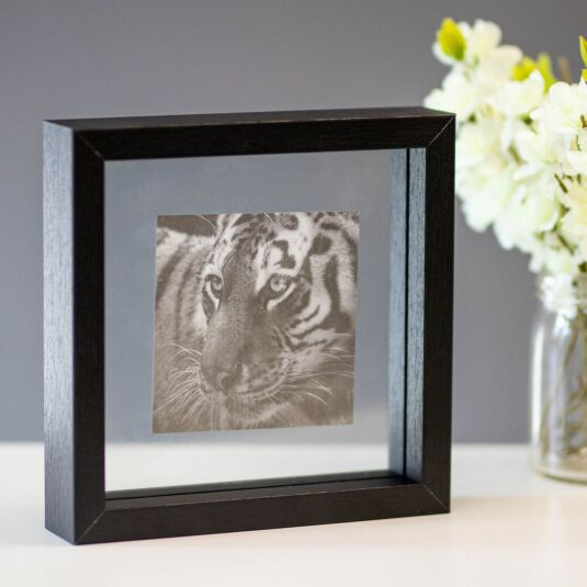 Monochrome Black Frame with Tiger Print