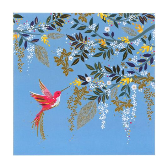 Hummingbird & Foliage Card