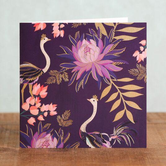 Ostriches Card