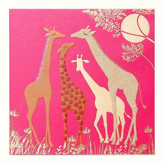 Giraffes Greetings Card