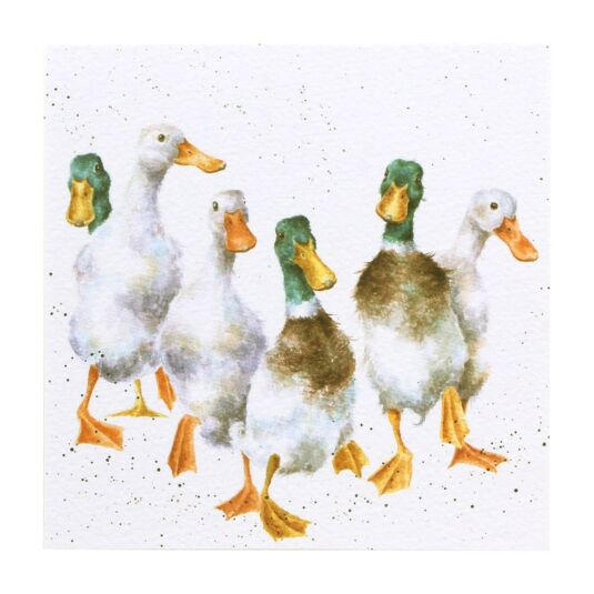 Country Set 'Quackers' - Ducks Card