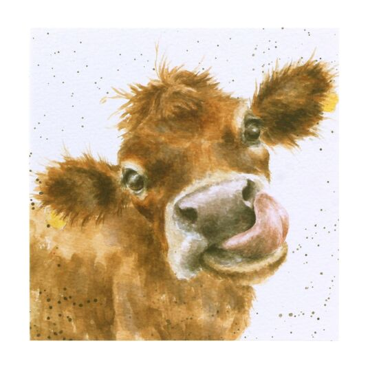 Country Set 'Mooooo' - Cow Card