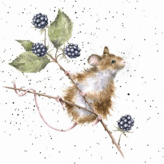 Country Set 'Brambles' Card