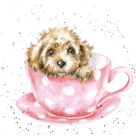 Country Set 'Teacup Pup' Card