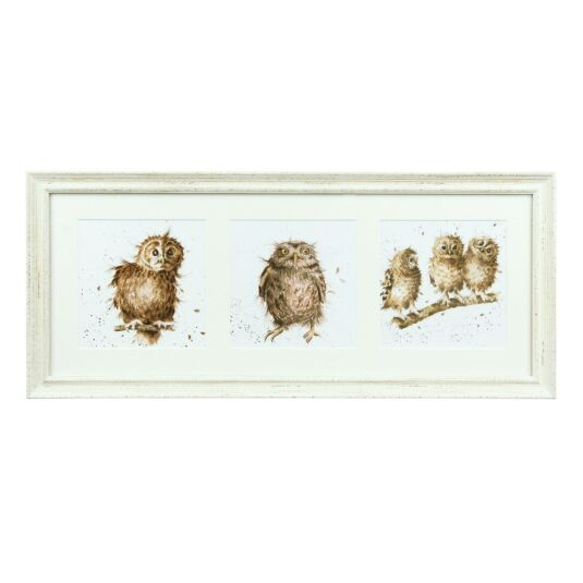 A Trio of Owls Triple Print With Cream Frame