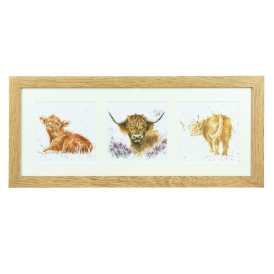 A Trio of Highland Cows Oak Framed Print