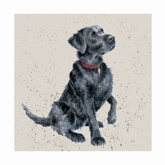 A Dog's Life Black Labrador Card