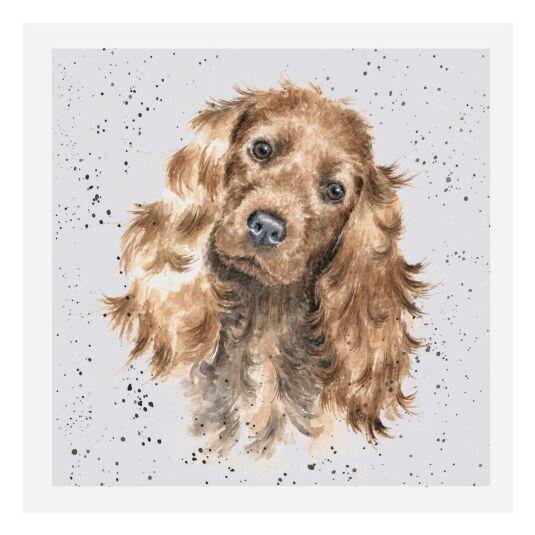 A Dog's Life Tri Colour Cocker Spaniel Card