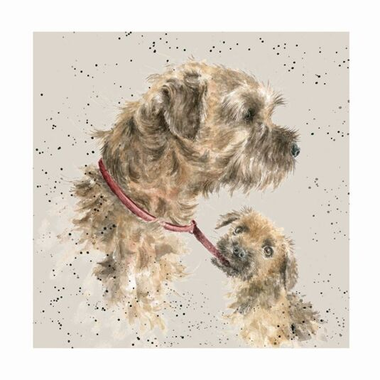 A Dog's Life Border Terrier Card