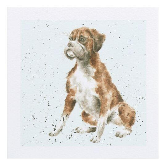 A Dog's Life Boxer Dog Card