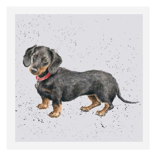 A Dog's Life Dachshund Card