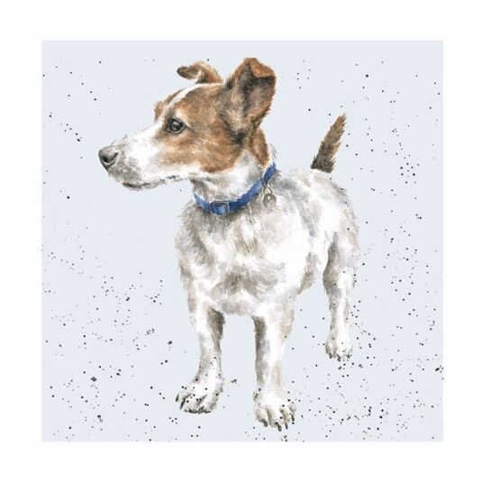 A Dogs Life Jack Russell Card