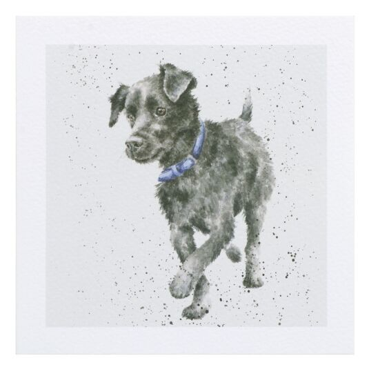 A Dog's Life Patterdale Dog Card