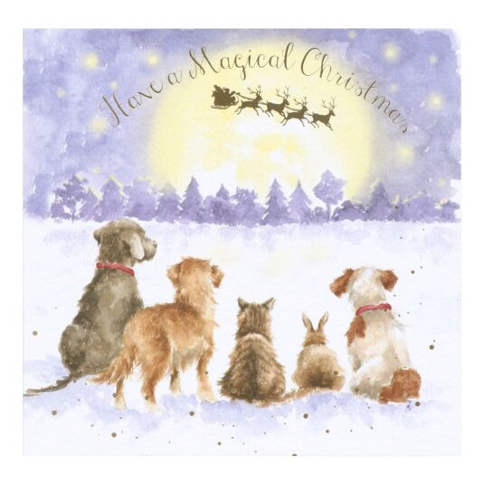 'The Magic Of Christmas' Christmas Card