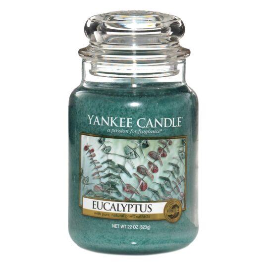 Eucalyptus Limited Edition Large Jar Candle