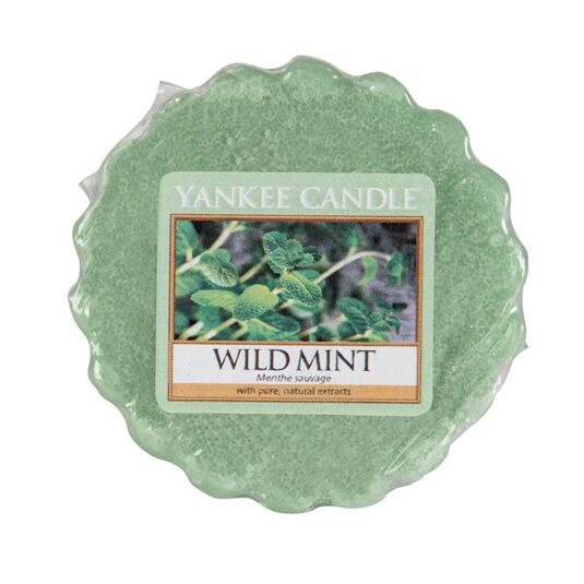 Wild Mint Wax Melt Tart
