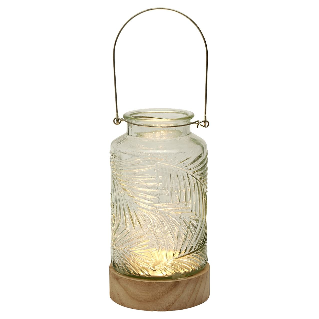 Transomnia Clear LED Vase with Wooden Base