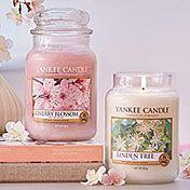Pure Essence collection from Yankee Candle